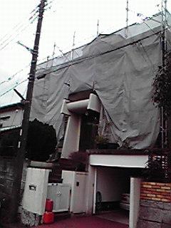 200901201203000.jpg